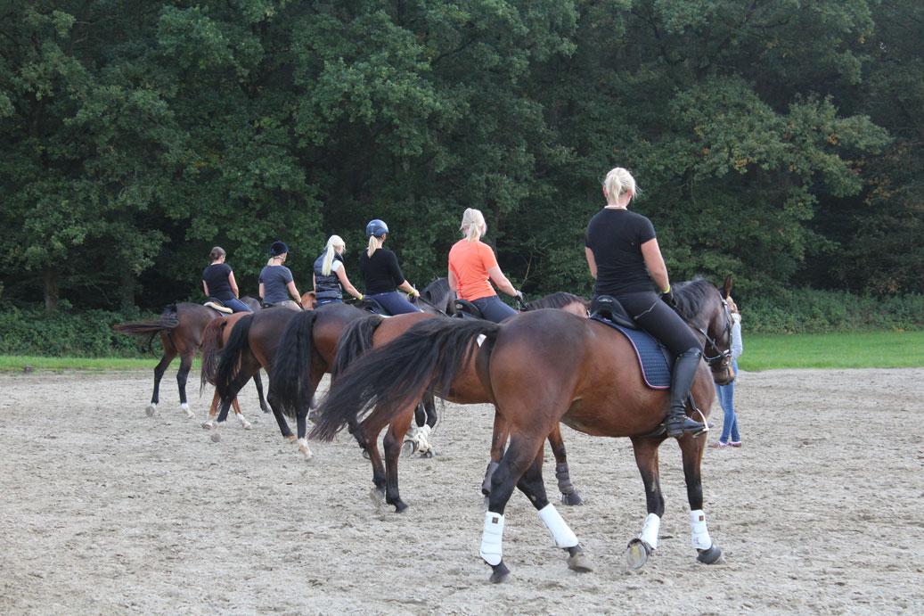RuFV Husbyharde - unsere Mannschaft beim Training